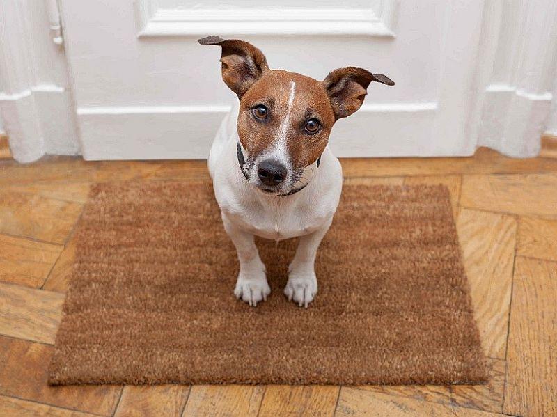 personalized doormats