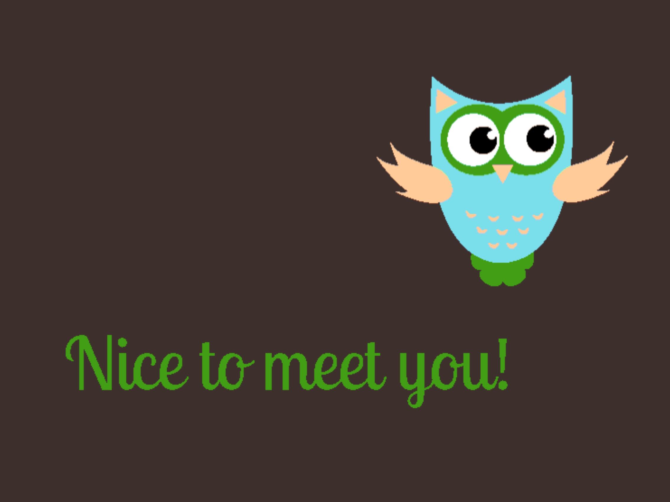 Nice to meet you 999-1310
